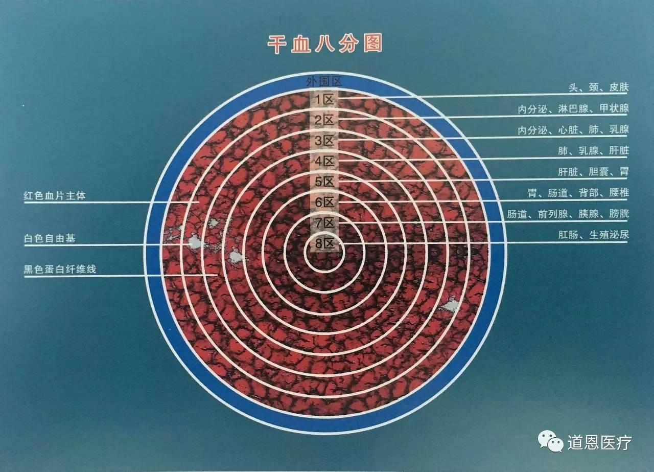 一滴血检测干血八分图