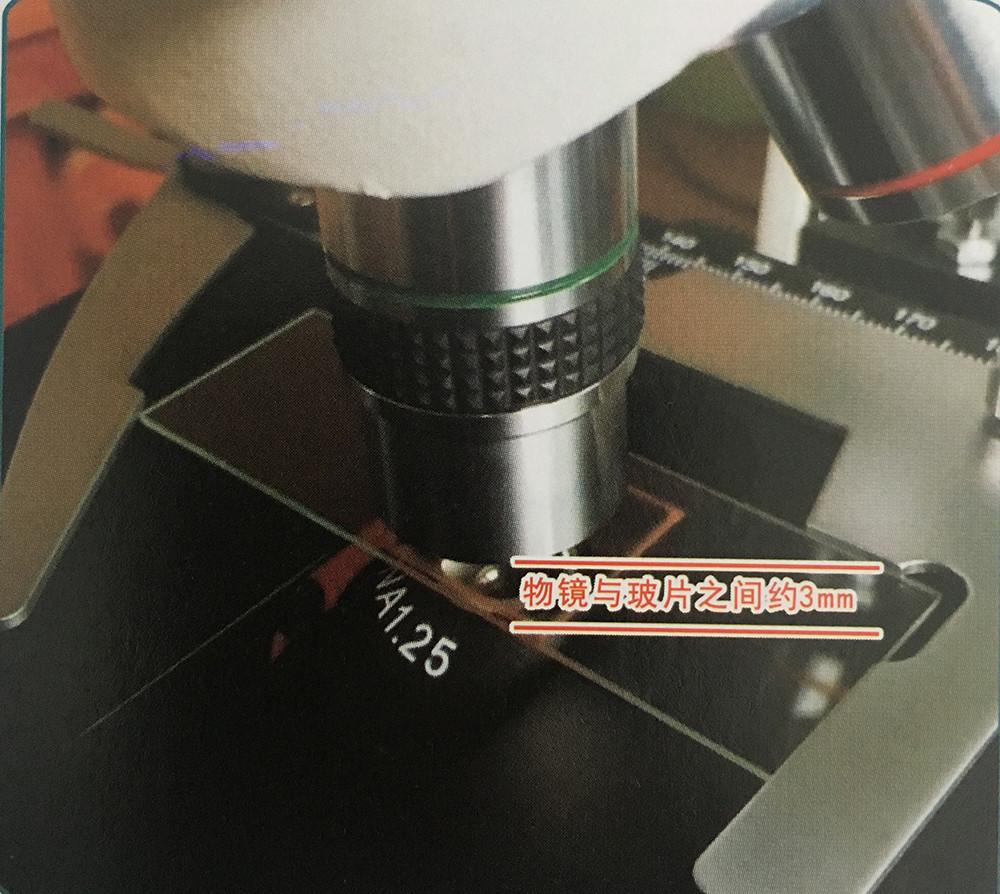 黑背景一滴血检测仪20X物镜